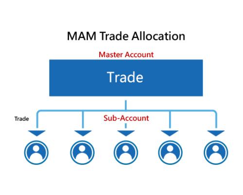 How Forex MAM Accounts Work